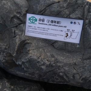糸魚川 岩石9 砂岩