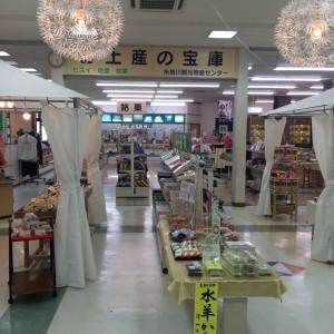 糸魚川駅 土産物屋