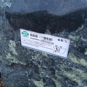 糸魚川 岩石2 蛇紋岩