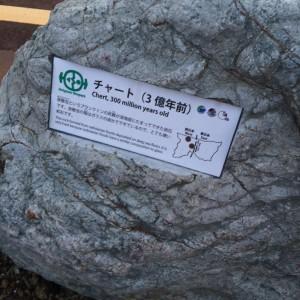 糸魚川 岩石8 チャート
