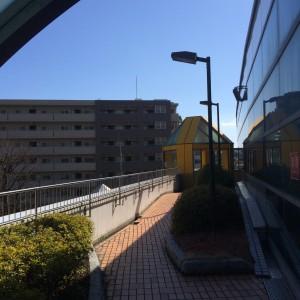 緑園都市駅 ストロボエッジ