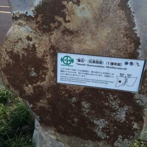 糸魚川 岩石13 薬石
