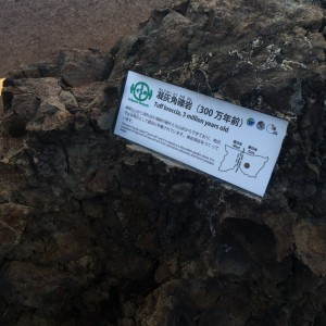 糸魚川 岩石14 凝灰角礫岩