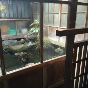 糸魚川駅 そば 泉家
