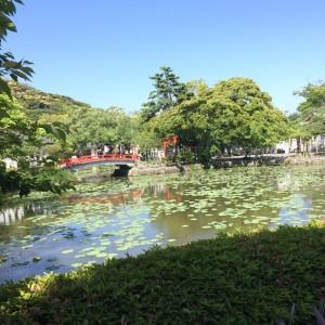 神苑ぼたん庭園 鶴岡八幡宮