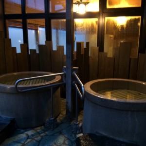 新潟駅 ホテル 温泉