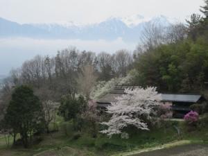 20150410tanimura