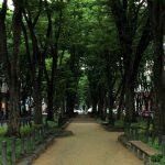 仙台観光のおすすめモデルコース~ブラタモリ準拠でたった1つの旅を~