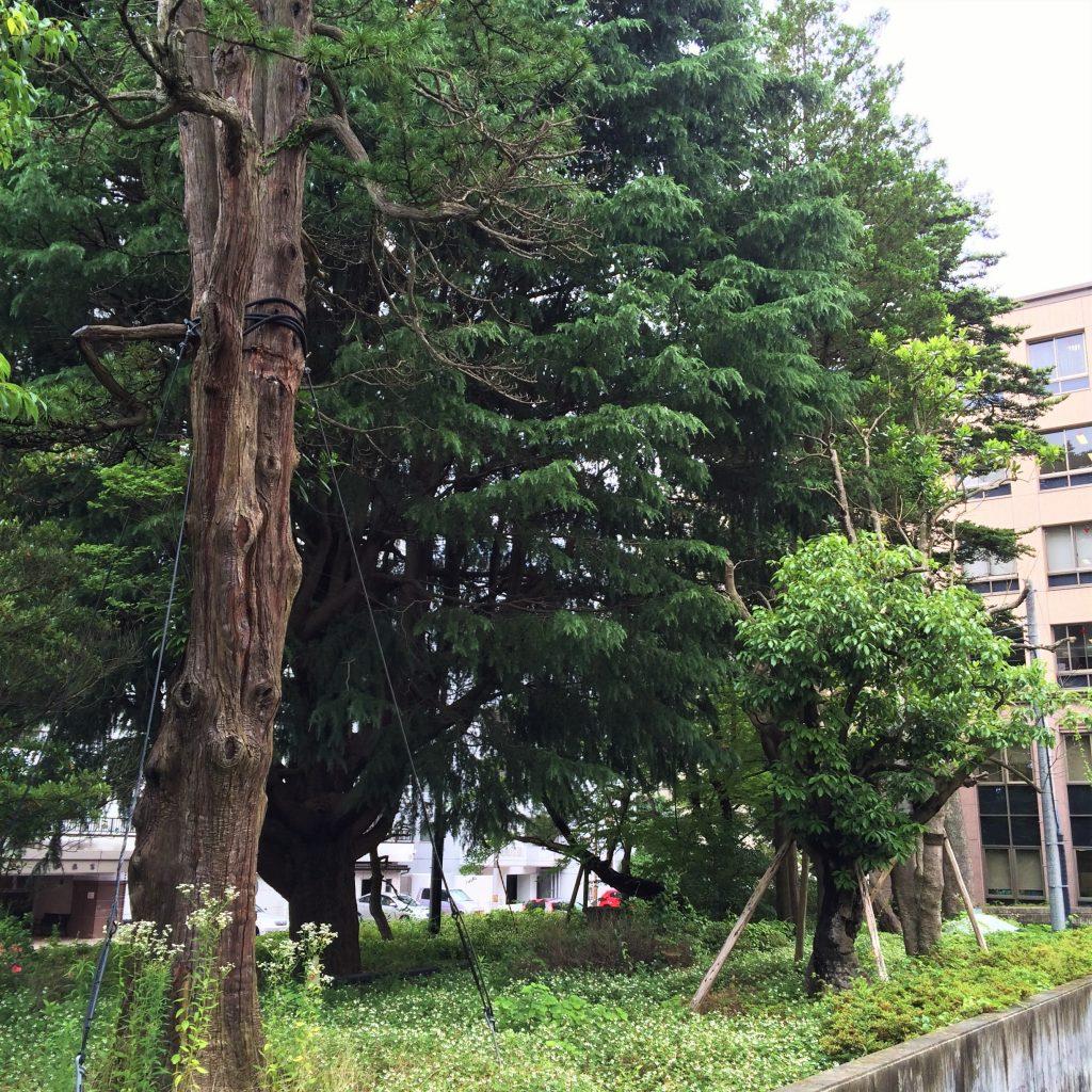 仙台の武家屋敷 高等裁判所