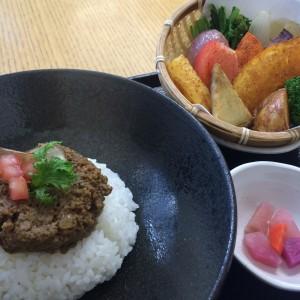 鎌倉野菜カレー かん太