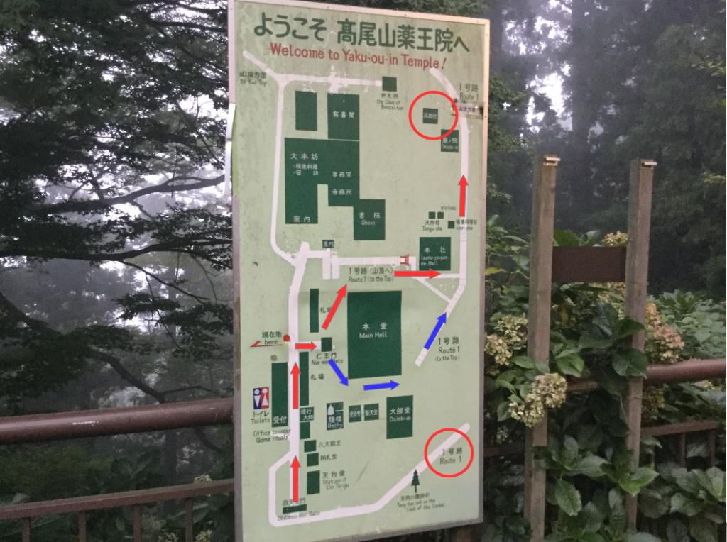 ブラタモリ 高尾山