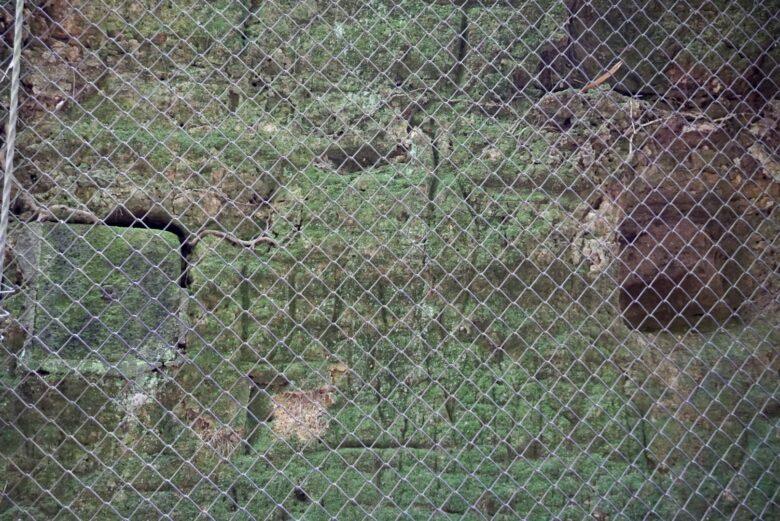 猿島 電線を這わせた工事の跡